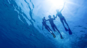 Cover your scuba diving guests with tour operators insurance coverage